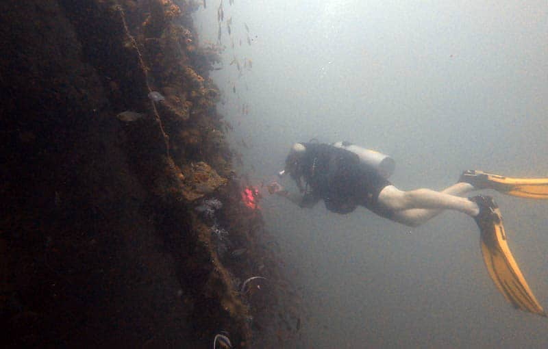 King Cruiser Wreck Diving