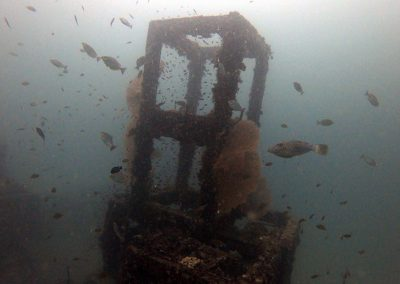 Viking Bay - Artificial Reef