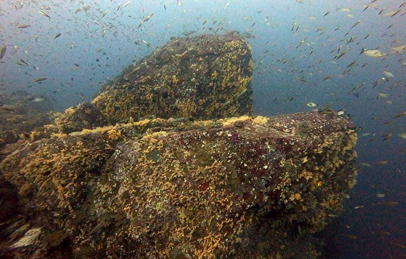 Koh Bon Pinnacle Thailand Diving