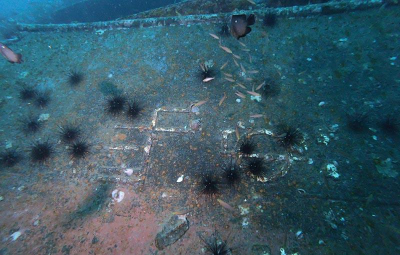 MV Sea Chart Wreck 5.JPG