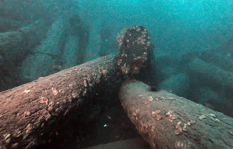 MV Sea Chart Wreck - Teakwood Logs
